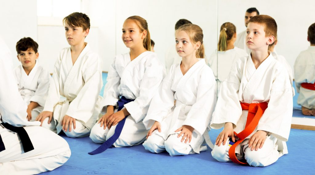 martial arts profitable, students listening to instructor