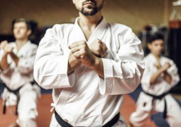 martial arts software, martial arts school