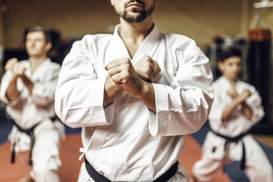 martial arts software, martial arts school