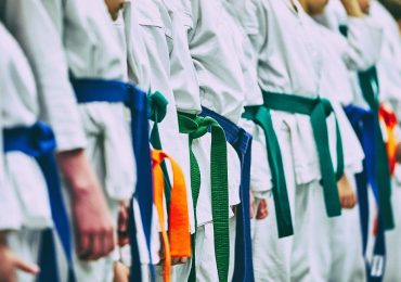 martial arts software, karate belts