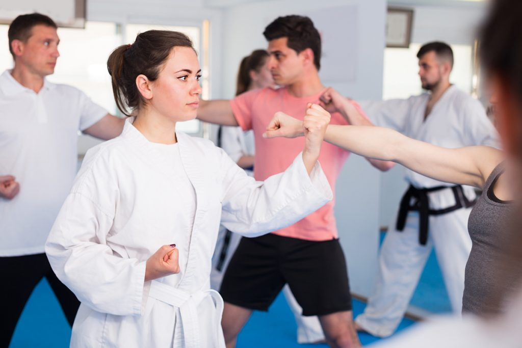 martial arts software, martial arts feature