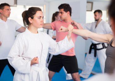 martial arts software, martial arts feature