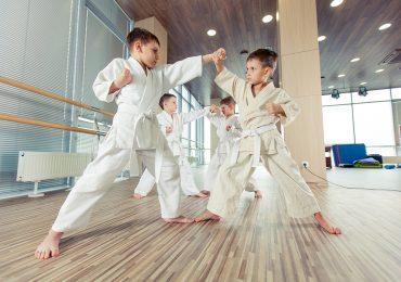 martial arts software, martial arts kids