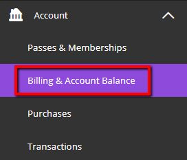 View Billing & Account Balance