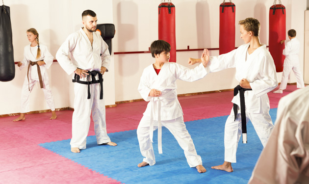 martial arts profitable, martial arts tournament