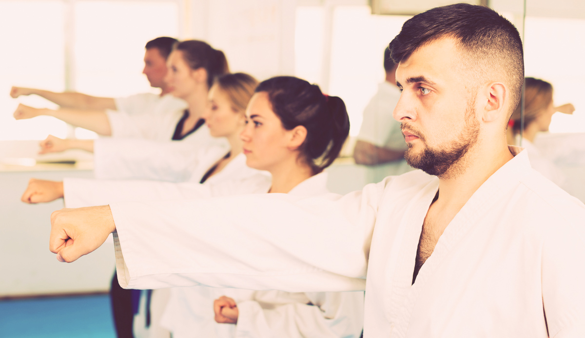 Marketing Martial Arts, adults practicing martial arts