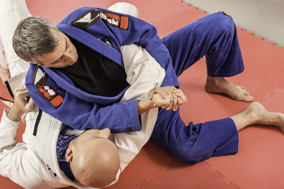 martial arts industry trends, Brazilian jiu jitsu